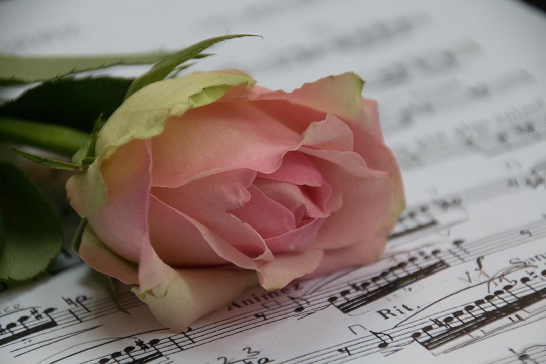 Blog: Talent - Persoonlijk afscheid