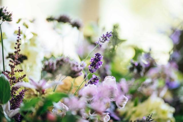 Blog: Lavendel - Persoonlijk afscheid