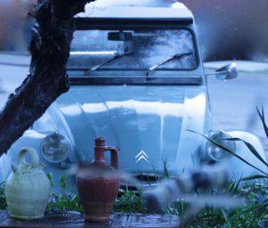 Blog: Blauwe eend - Persoonlijk afscheid