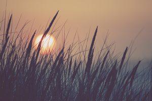 Blog: Laatste dag - Persoonlijk afscheid